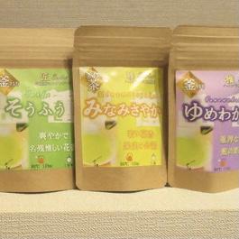 【釜炒り茶】心向樹 / 心向樹の釜炒り茶セット