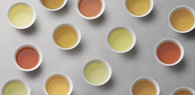 【イベント / 東京&On line】日本烏龍への挑戦 〜日本茶の今と未来をつなぐ〜